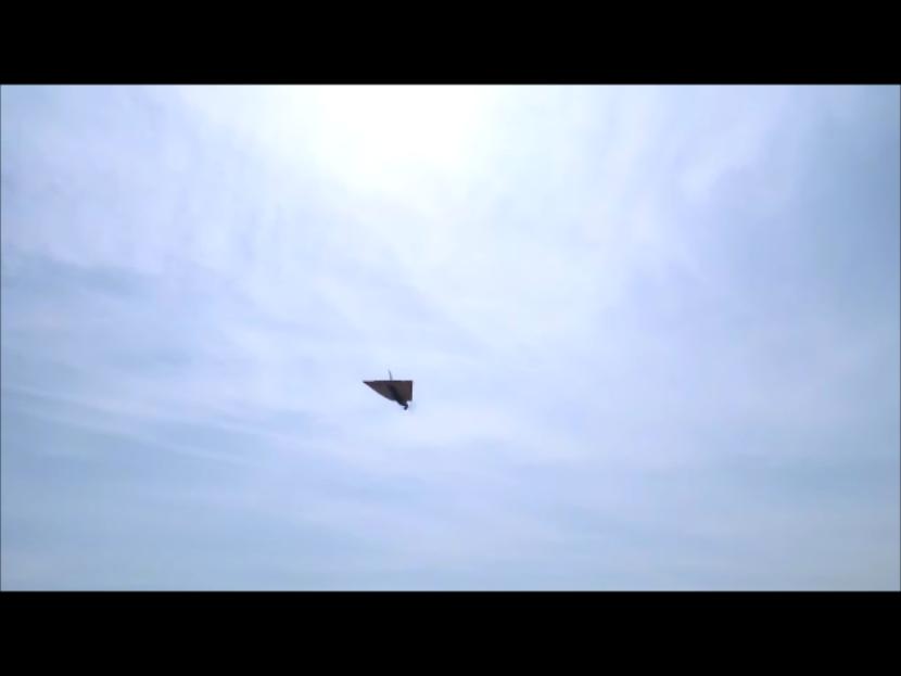 VTO free flight model - Page 4 Instan38
