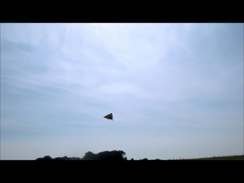 VTO free flight model - Page 4 Instan39