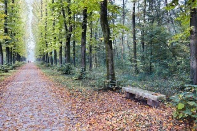 I luoghi più belli dove correte Parco_10