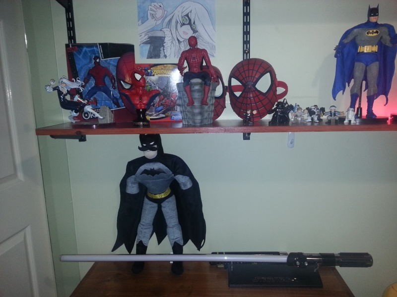My not so empty completed new shelf 2013-013