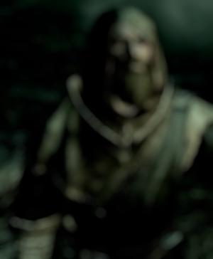 Die Begegnung ( Gragosh, Shyrr und Rowan) Breton12