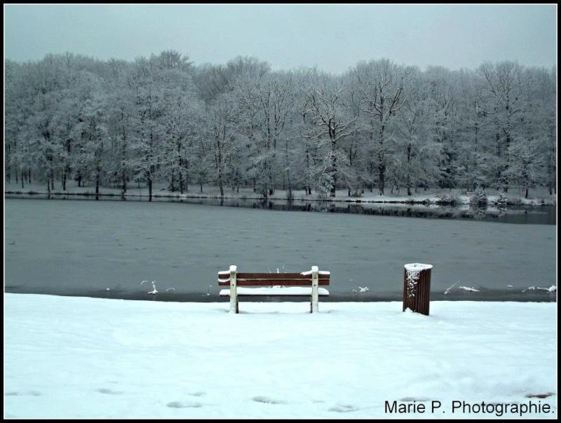 Lac.  93615110