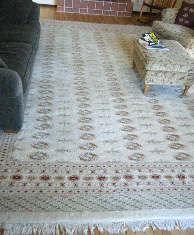 Large Ivory Colored Boukara Rug -- 10' x 14' FOR SALE Dscf8610