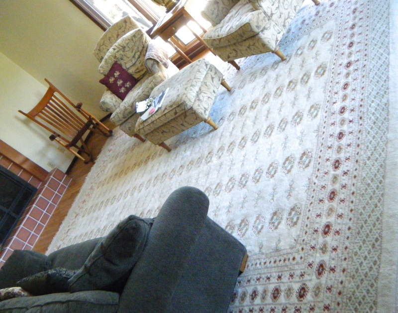 Large Ivory Colored Boukara Rug -- 10' x 14' FOR SALE Dscf8616