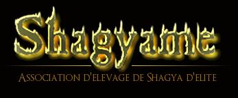 Le Shagyâme - Association Equidéow