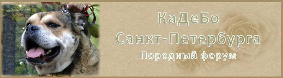Ca De Bou Санкт-Петербурга
