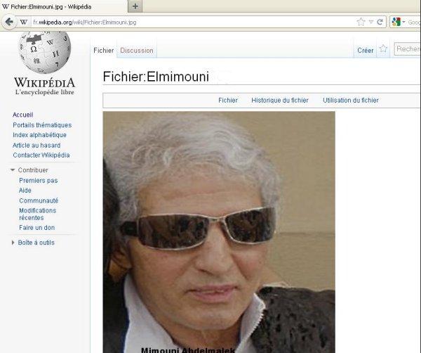 Mimouni sur Wikipedia Elmimo11