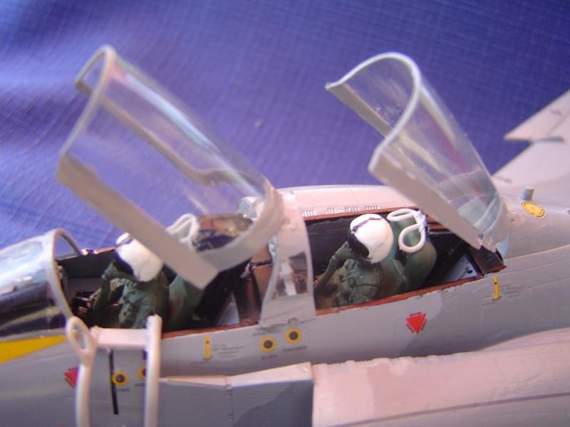 F4 Phantom II anniversaire 35 ans Dsc07314