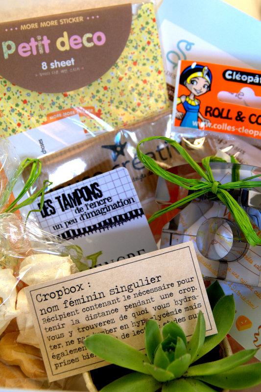 Recette Crop Pause Créative Imgp4513