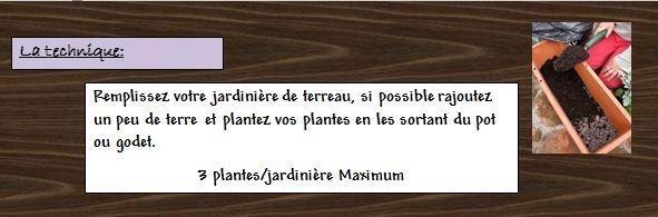 Fiche Réalisation d'une jardinière de fines herbes...  Fine_h19