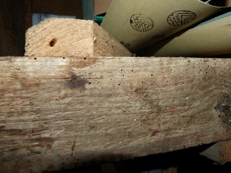 Lot de bois P1000410