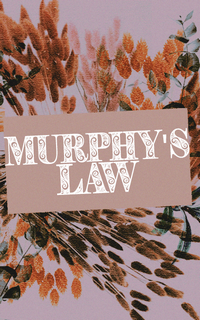 murphy's law › admin mimi comme une souris