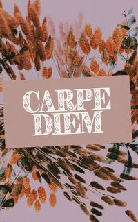 carpe diem › admin mimi comme une souris