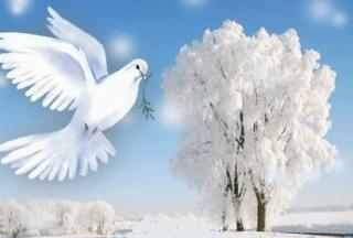 Belles images trouvées sur Pinterest  - Page 2 12101710