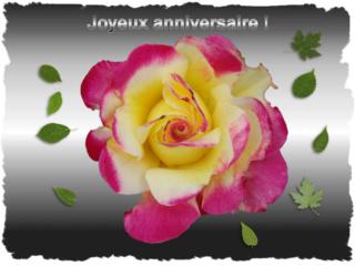 Anniversaire Mari-Lo... Bon20a10