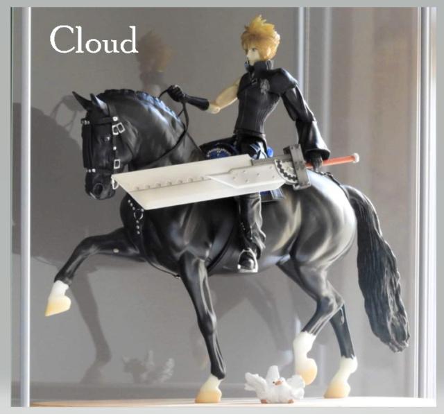 les chevaux de l'écurie Du vieux porche, bienvenue dans ce refuge miniature - Page 10 Cloud11