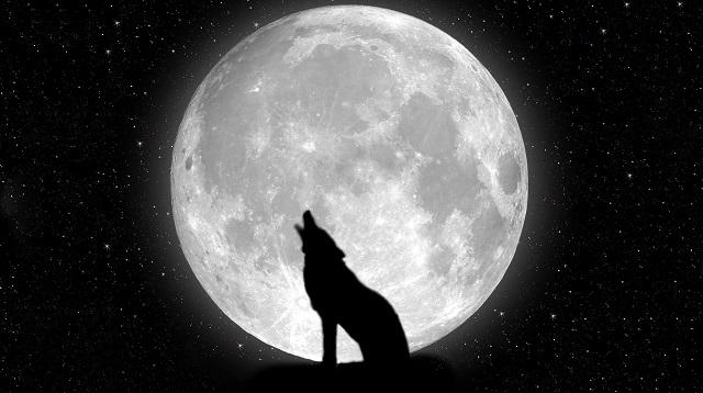 """Conférence AG33 : """"La Lune, entre mythe et réalité"""", jeudi 7 octobre 2021 Tzrxmo10"""