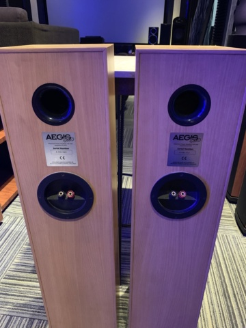 Acoustic Energy AEGIS 2 Floorstanding Speaker (Used) Img_2313