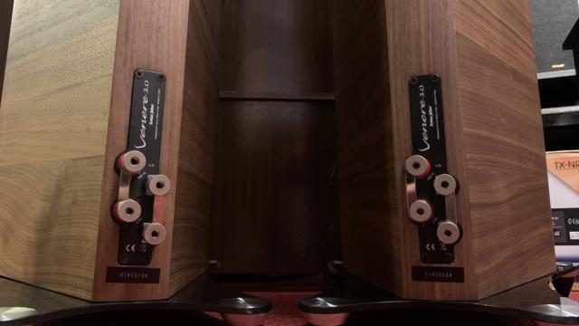 Sonus Faber Venere 3.0 Floorstanding Speaker (Used) Img_3611
