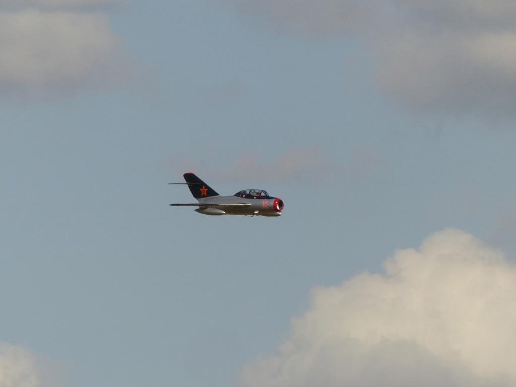 [Concours 2019 - 1] Revell P-47 D Mexique : FINI P1030215
