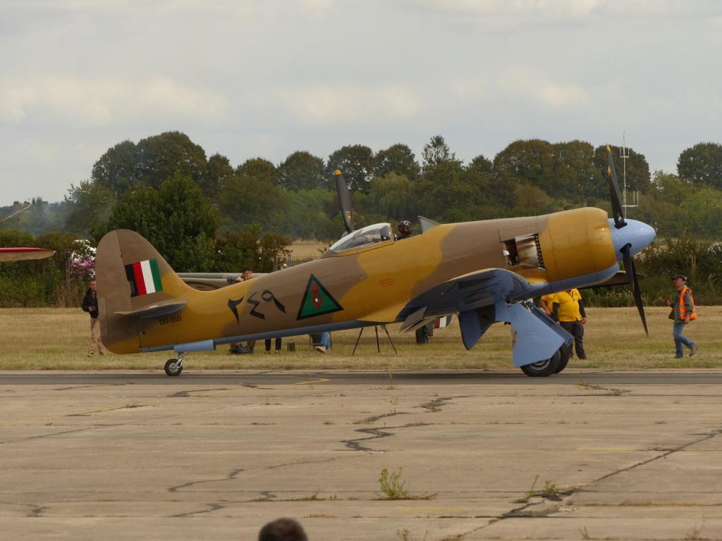 [Concours 2019 - 1] Revell P-47 D Mexique : FINI P1030216