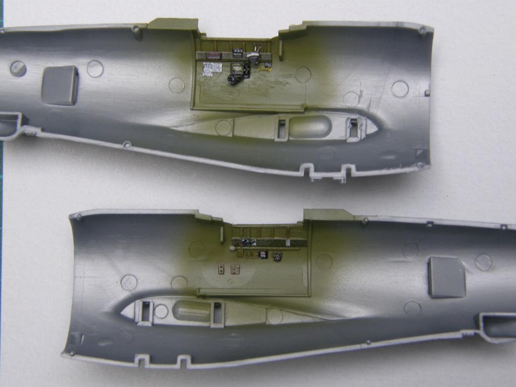 [Concours 2019 - 1] Revell P-47 D Mexique : FINI P8060213