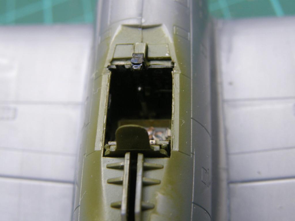 [Concours 2019 - 1] Revell P-47 D Mexique : FINI P8100213