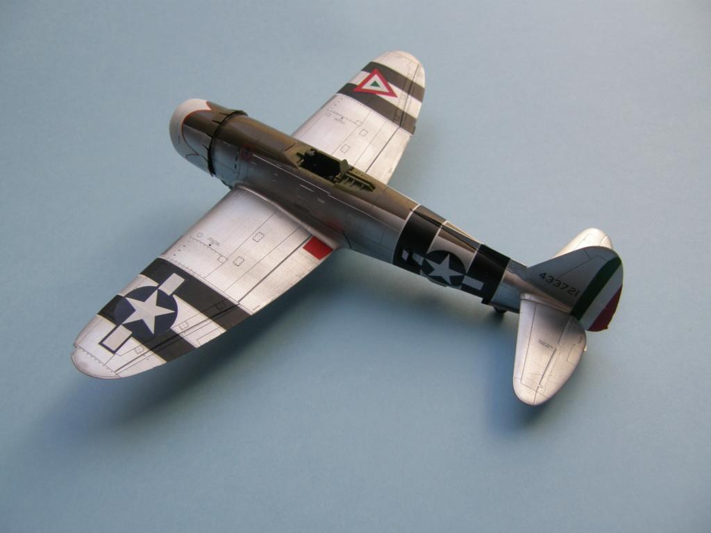 [Concours 2019 - 1] Revell P-47 D Mexique : FINI P9010219