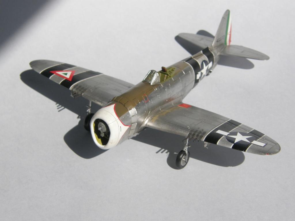 [Concours 2019 - 1] Revell P-47 D Mexique : FINI P9140215