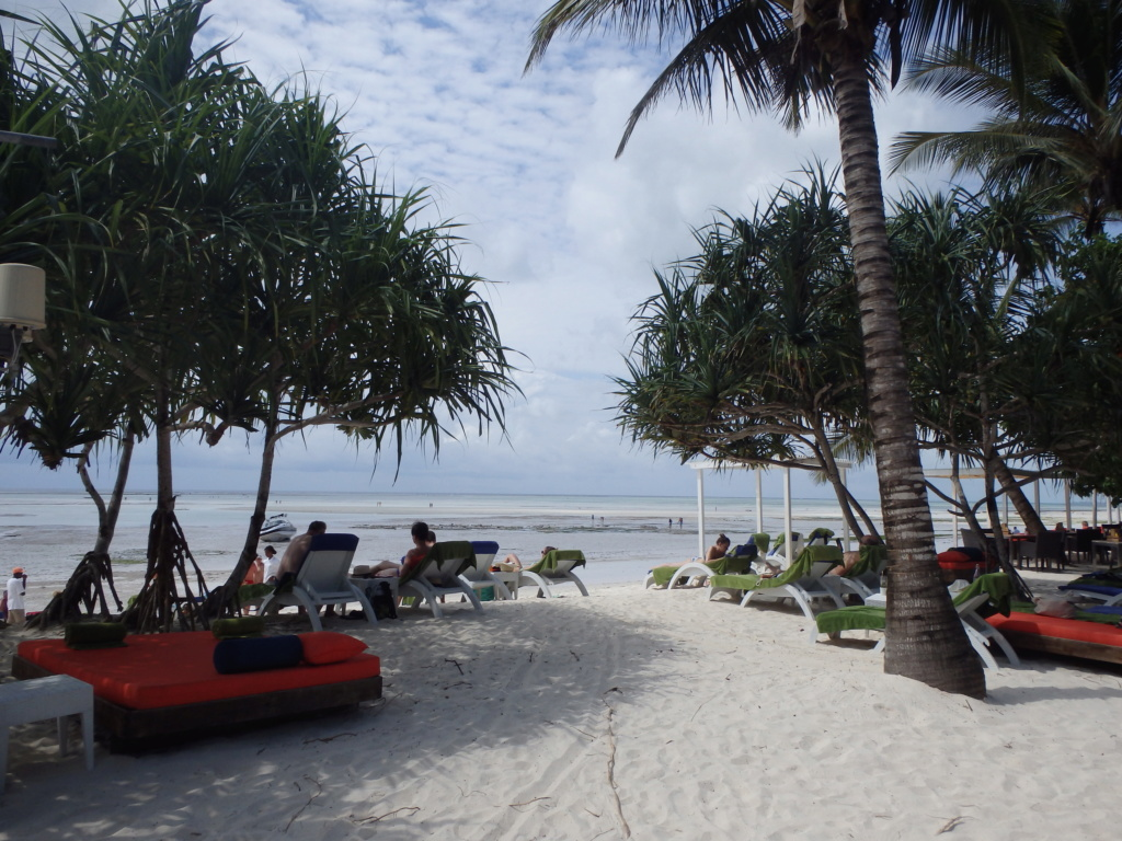 Furax file à Zanzibar en juin 2019 P6051410