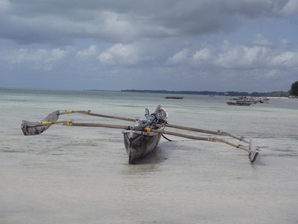Furax file à Zanzibar en juin 2019 P6061510