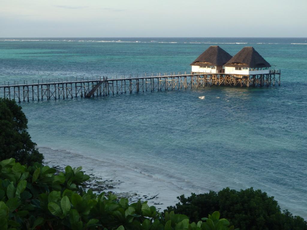 Furax file à Zanzibar en juin 2019 P6081510