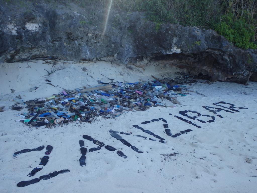 Furax file à Zanzibar en juin 2019 - Page 2 P6101511