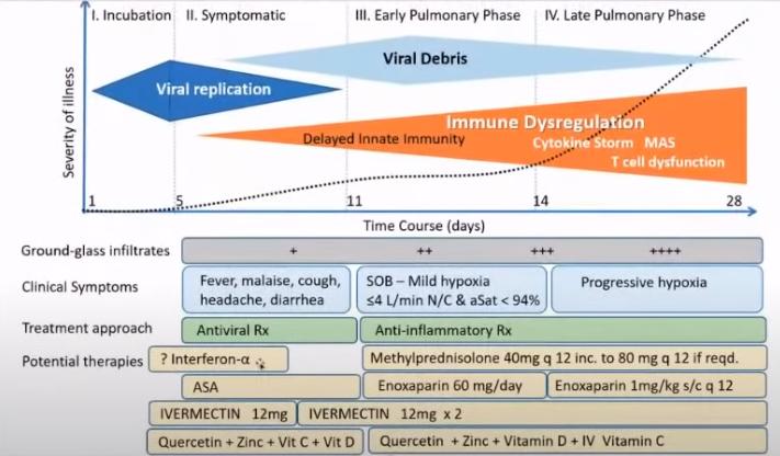 vitamine D3,  K, C , Zinc ; herbes; soins permettent de prevenir et guerir à 100%  du Covid-19   Pasted10