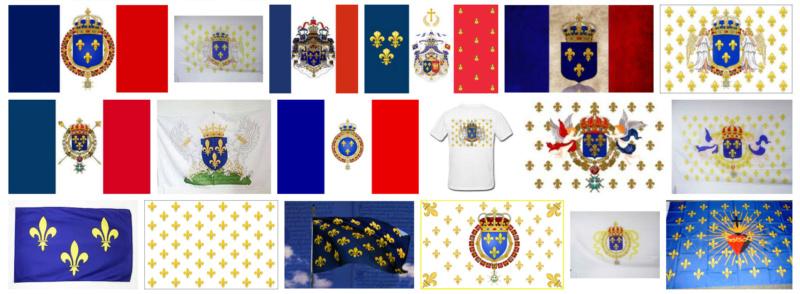 Quel est le l'étendard ou drapeau royal de France ? Drapea10