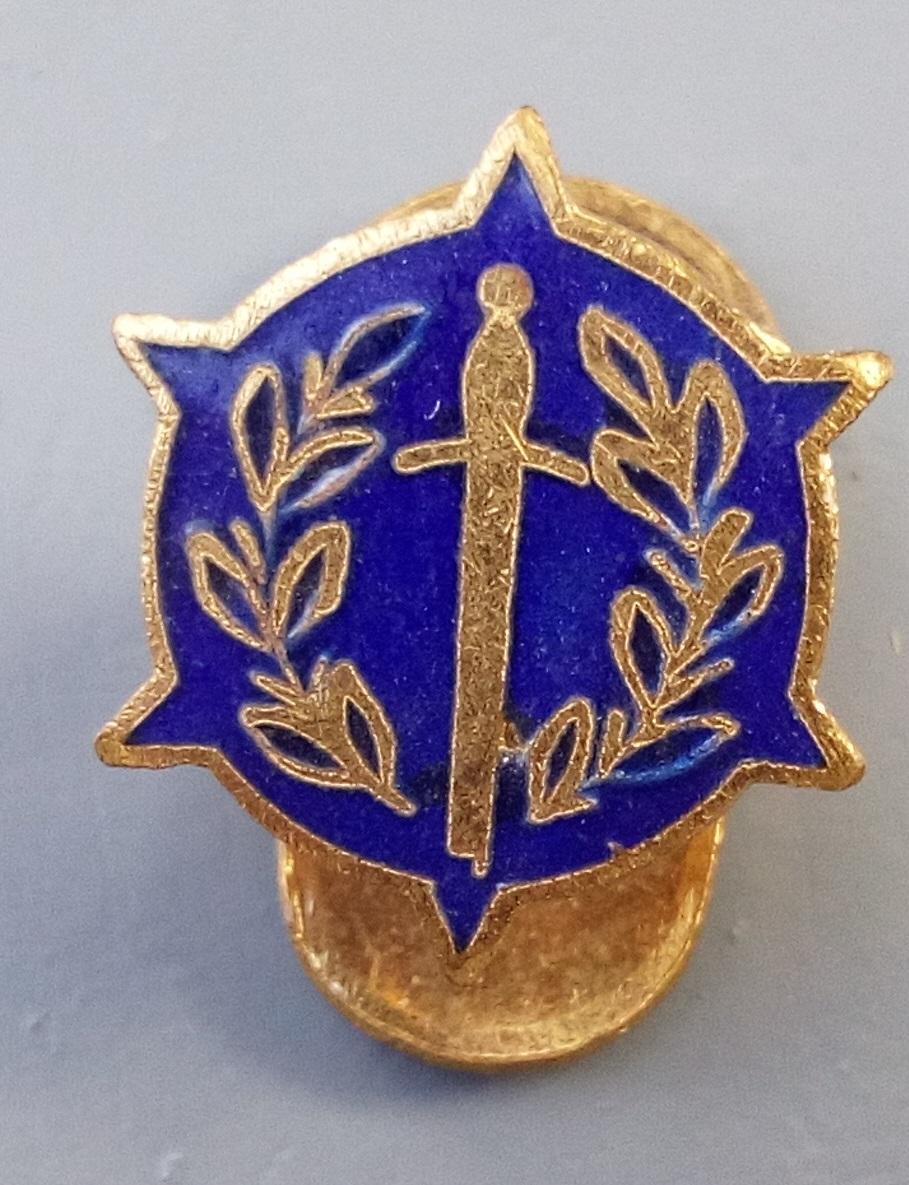 Boutonnières de décorations et insignes belges à identifier. Img_2254
