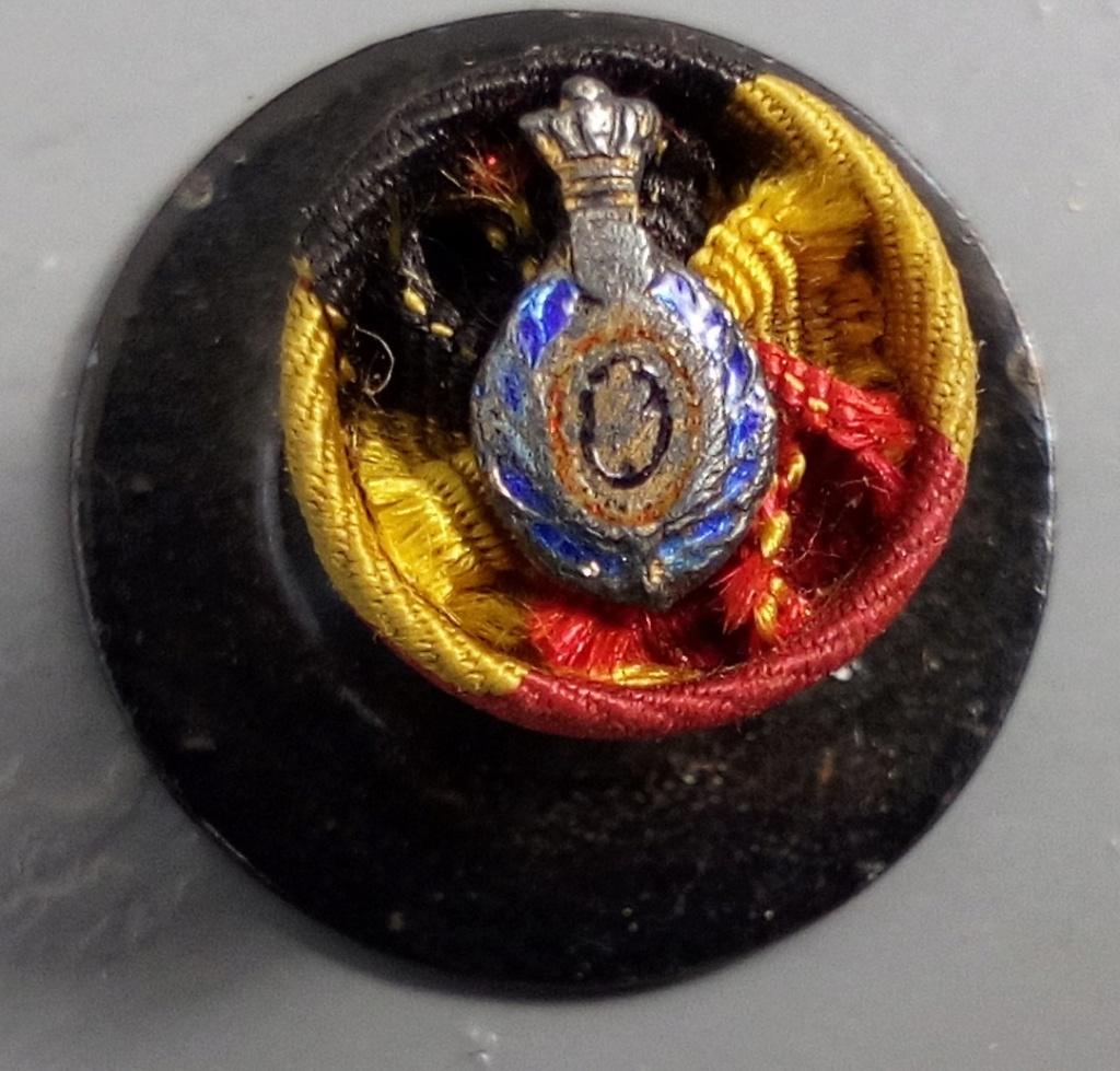 Boutonnières de décorations et insignes belges à identifier. Img_2257
