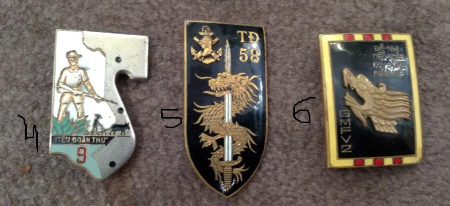 Insignes Indochine Img_2997