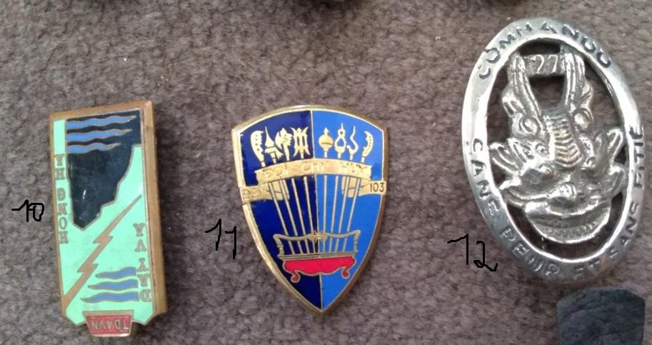 Insignes Indochine Img_2999
