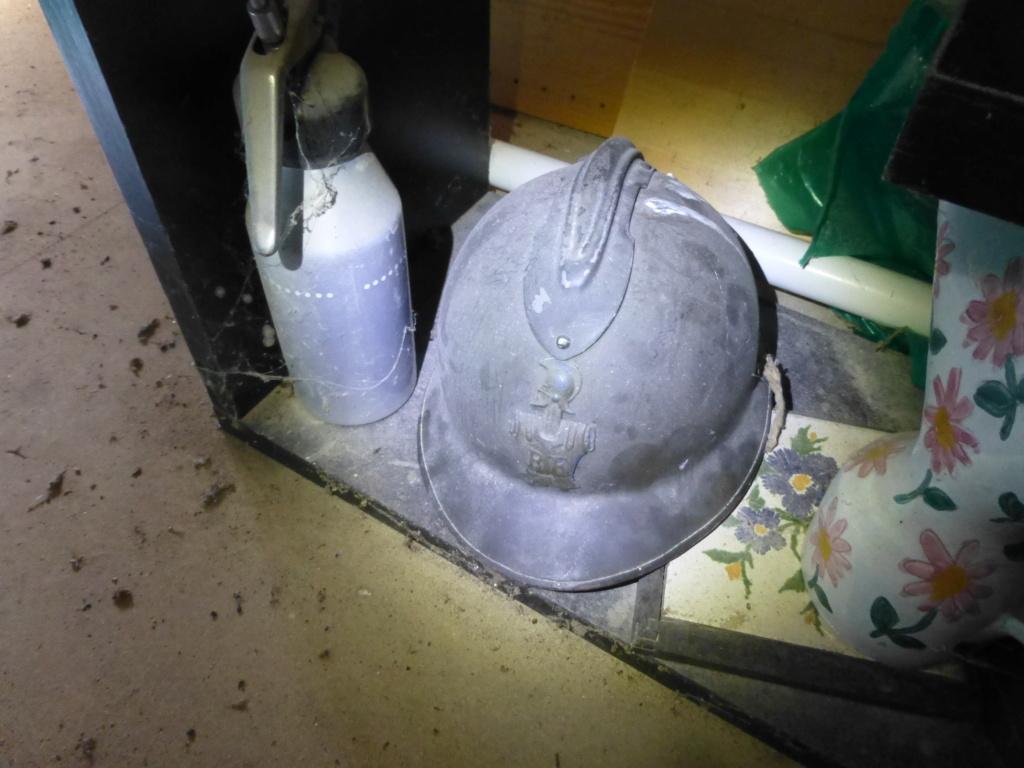 Fable du casque et du lérot...... P1080512