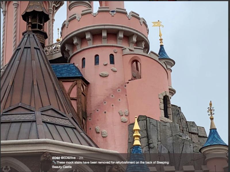 Le Château de la Belle au Bois Dormant - Réhabilitation [Fantasyland - 2020-2022] - Page 2 Captur34