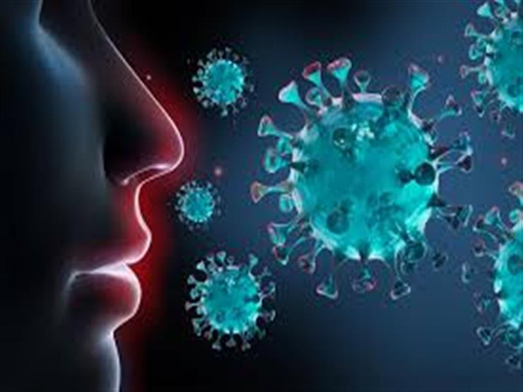 فيروس كورونا: طبيبة تحذر من تناول هذه الأطعمة الخطيرة 2021_115