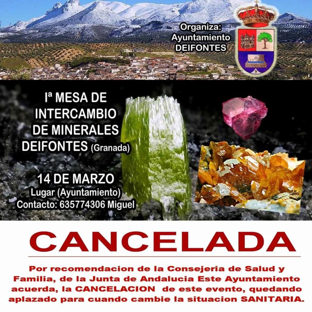 1 mesa de intercambio de Deifontes Granada -14 de Marzo 2020-contacto Miguel tlf-635774306 39f83310