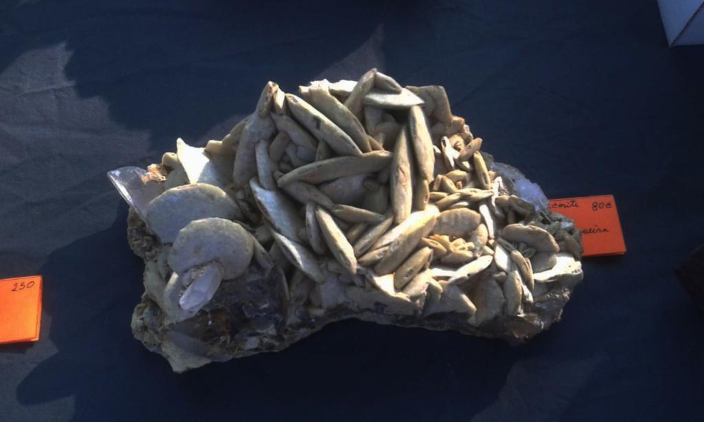 I Feria de minerales intercambio y venta de Cártama (MÁLAGA) - Página 4 66609c11