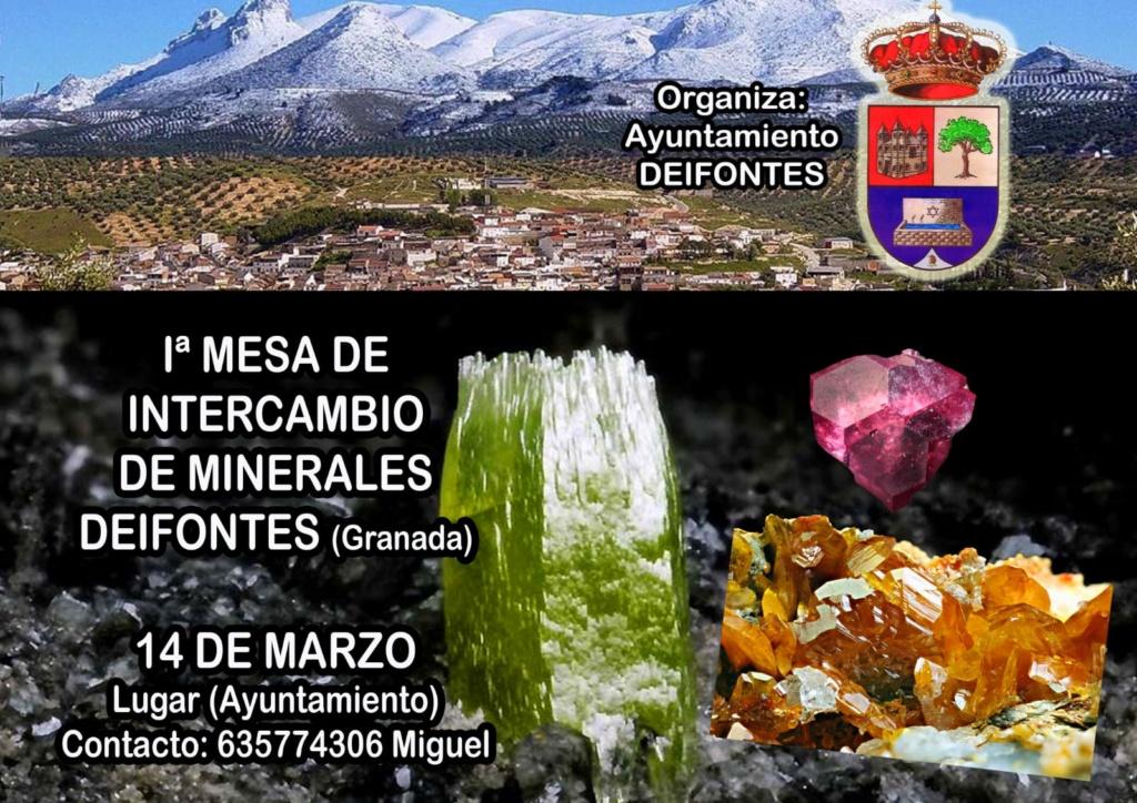 1 mesa de intercambio de Deifontes Granada -14 de Marzo 2020-contacto Miguel tlf-635774306 7f787010