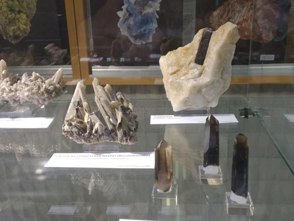 VI feria de minerales de Salamanca Cb232110