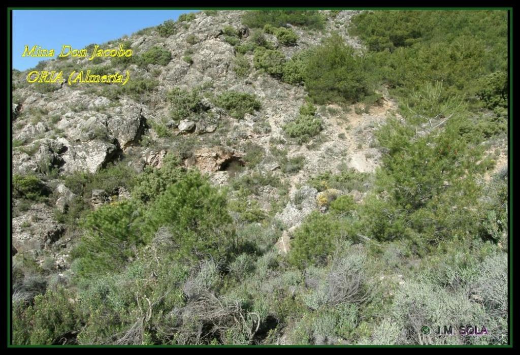 MINA DE DON JACOBO, MINA LOBULLI Y MINA CAÑARICO, ORIA (Almería) Don_ja10