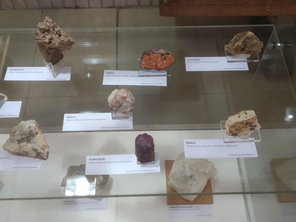 VI feria de minerales de Salamanca F2272610