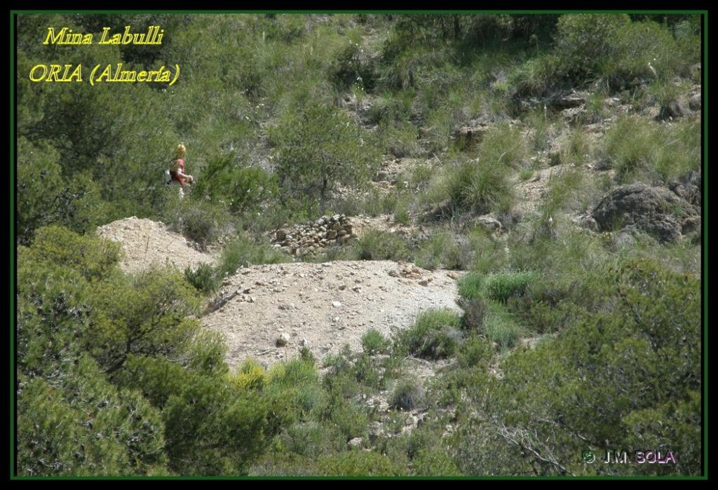 MINA DE DON JACOBO, MINA LOBULLI Y MINA CAÑARICO, ORIA (Almería) Labull11
