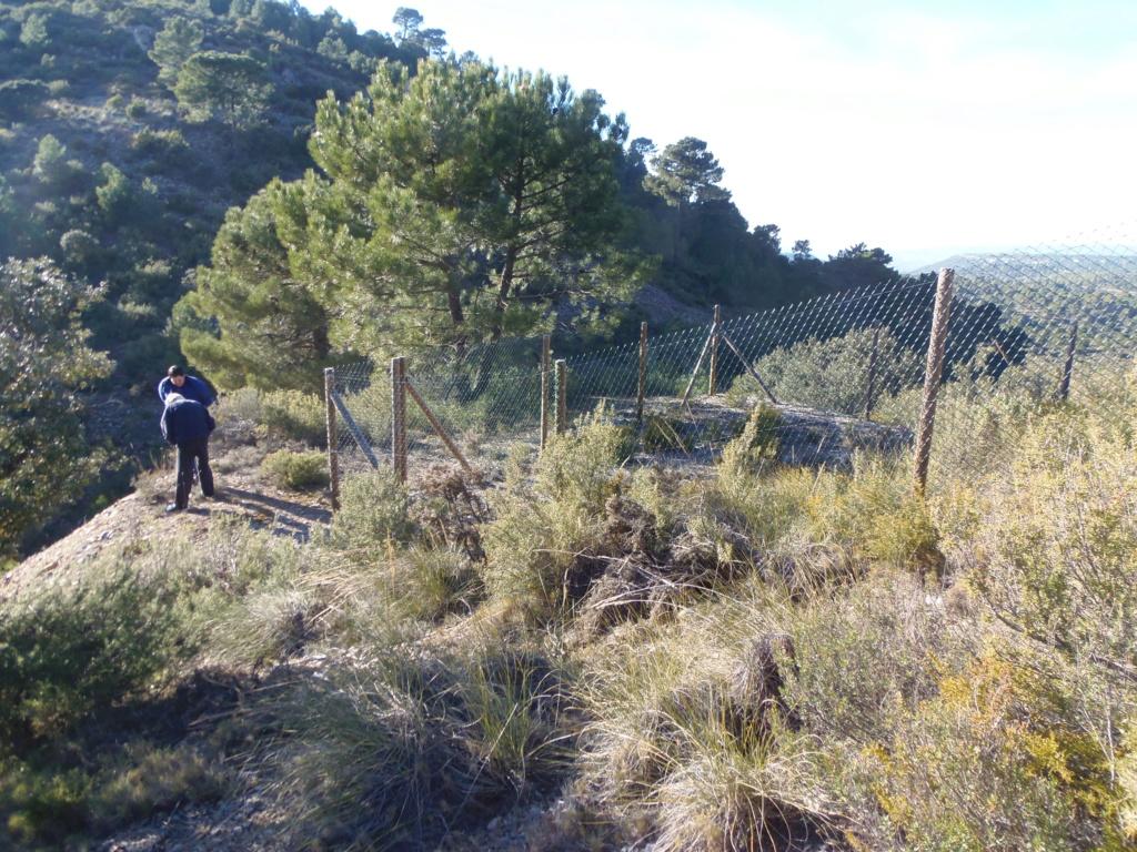 MINA SAN ANTONIO DE PADUA Y SU AMPLIACION, ALBUÑUELAS (Granada) P2100013